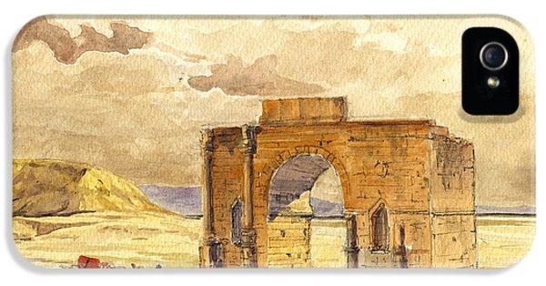 Camel iPhone 5s Case - Volubilis Mecknes Ruins by Juan  Bosco