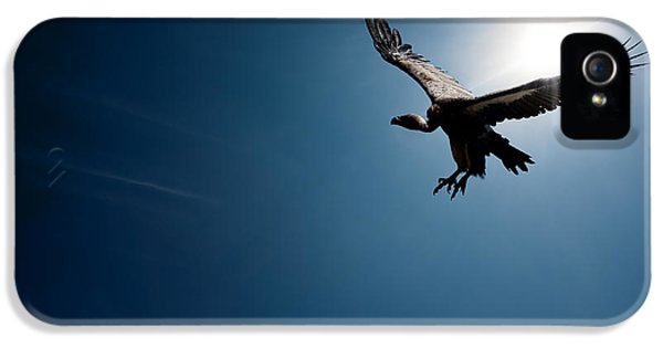 Vulture Flying In Front Of The Sun IPhone 5s Case