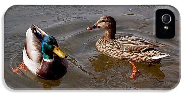 Wading Ducks IPhone 5s Case