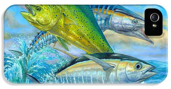 Dolphin iPhone 5s Case - Wahoo Mahi Mahi And Tuna by Terry  Fox