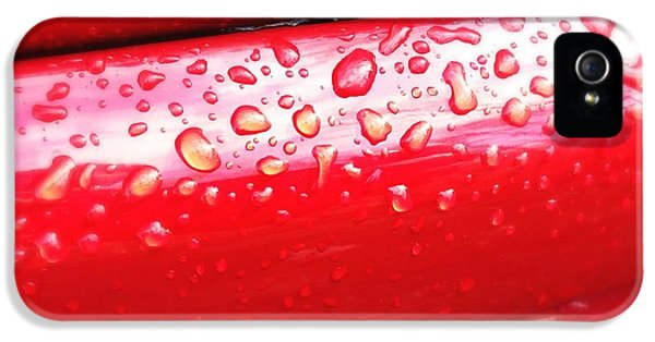 Decorative iPhone 5s Case - Water Drops On Red Car Paint by Matthias Hauser