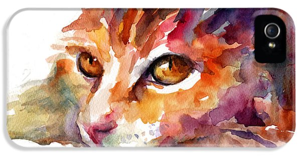 Watercolor Orange Tubby Cat IPhone 5s Case