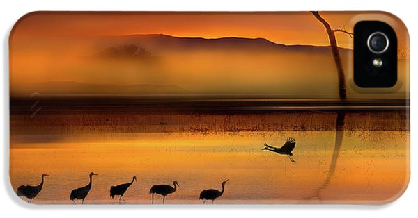Crane iPhone 5s Case - We Are Here Waiting For You by Shenshen Dou