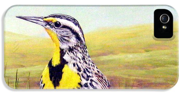 Meadowlark iPhone 5s Case - Western Meadowlark by Tom Chapman