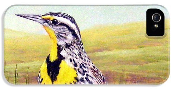 Western Meadowlark IPhone 5s Case by Tom Chapman