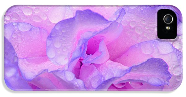 Wet Rose In Pink And Violet IPhone 5s Case by Nareeta Martin