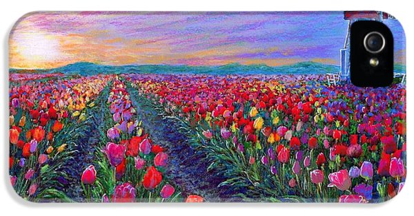 Tulip Fields, What Dreams May Come IPhone 5s Case by Jane Small