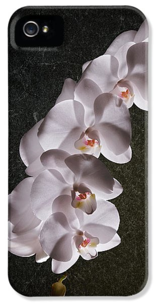 Orchid iPhone 5s Case - White Orchid Still Life by Tom Mc Nemar