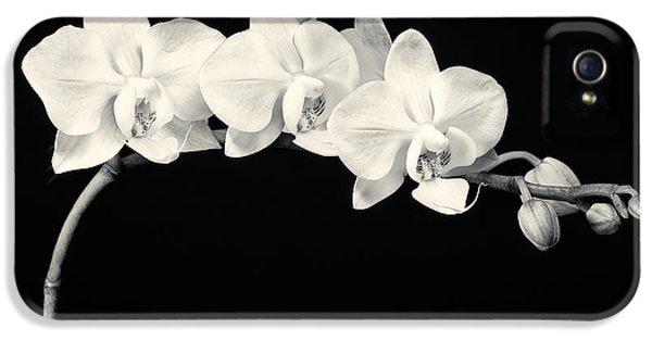 White Orchids Monochrome IPhone 5s Case