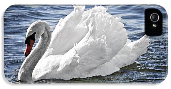 White Swan On Water IPhone 5s Case by Elena Elisseeva