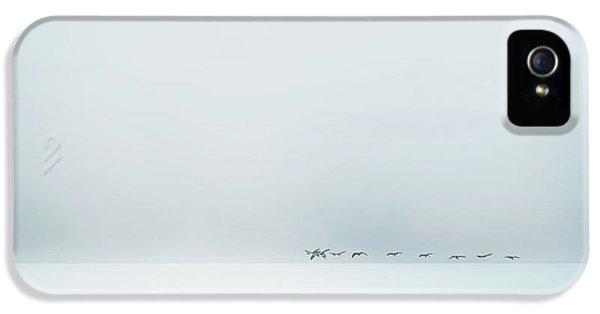 Goose iPhone 5s Case - Wild Geese by Piet Flour