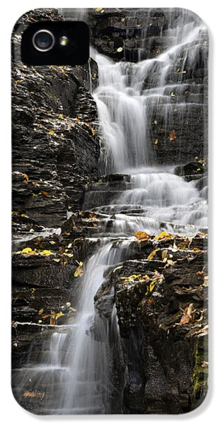 Winding Waterfall IPhone 5s Case