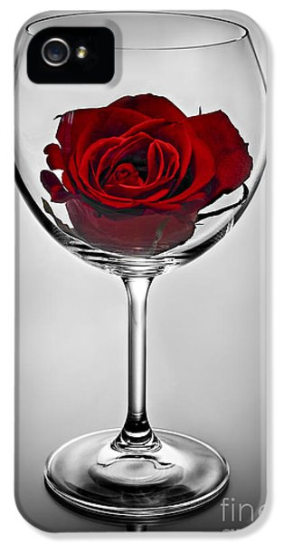 Wine iPhone 5s Case - Wine Glass With Rose by Elena Elisseeva