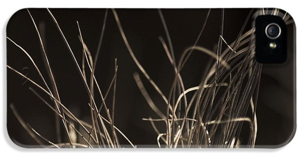 IPhone 5s Case featuring the photograph Winter Grass 2 by Yulia Kazansky
