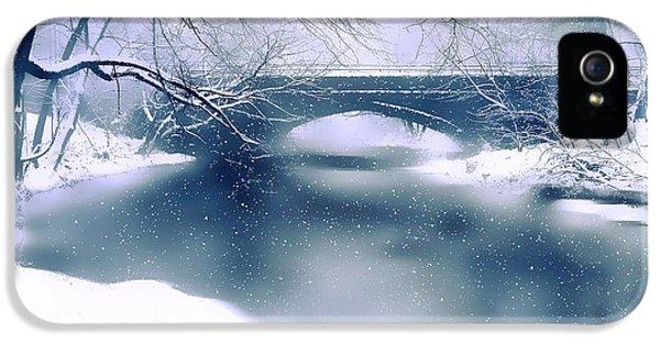 Winter Haiku IPhone 5s Case by Jessica Jenney