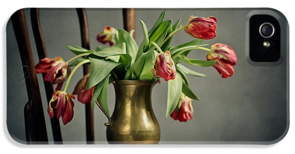 Tulip iPhone 5s Case - Withered Tulips by Nailia Schwarz