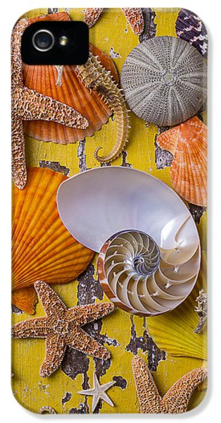 Wonderful Sea Life IPhone 5s Case by Garry Gay