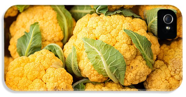 Yellow Cauliflower IPhone 5s Case by Rebecca Cozart