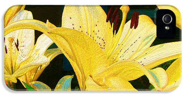 Yellow Lilies IPhone 5s Case