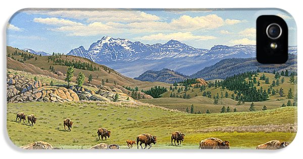 Buffalo iPhone 5s Case - Yellowstone Spring by Paul Krapf