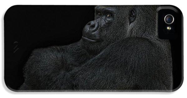 Gorilla iPhone 5s Case - yes I m the great pretender by Joachim G Pinkawa