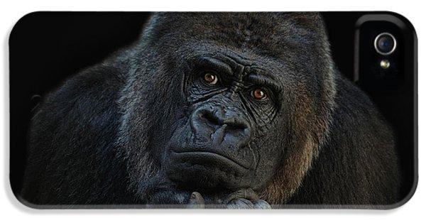 Gorilla iPhone 5s Case - You Ain T Seen Nothing Yet by Joachim G Pinkawa