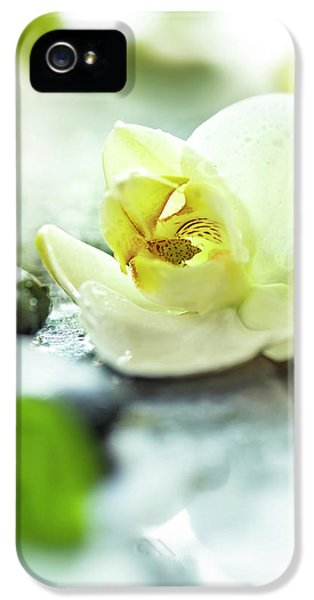 Orchid iPhone 5s Case - Zen Orchid by #name?