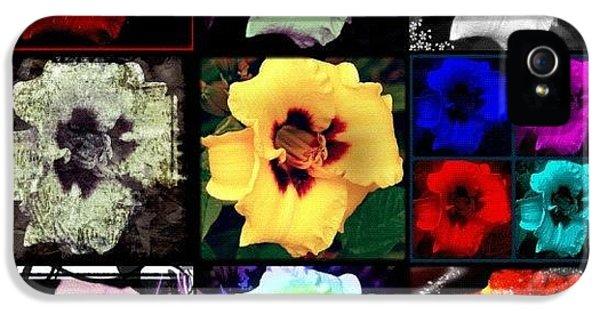 Edit iPhone 5s Case - A Dozen Blooms by Mari Posa
