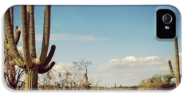 Arizona IPhone 5s Case