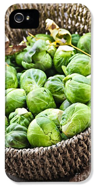 Cabbage iPhone 5s Case - Basket Of Brussels Sprouts by Elena Elisseeva