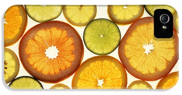Citrus Slices IPhone 5s Case by Photo Researchers