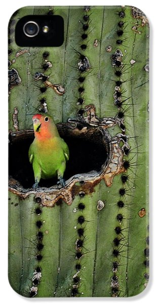 Home Sweet Home  IPhone 5s Case