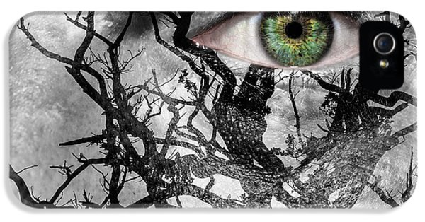 Medusa Tree IPhone 5s Case by Semmick Photo