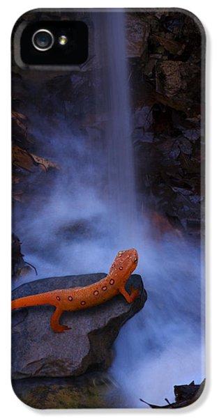 Newt Falls IPhone 5s Case by Ron Jones