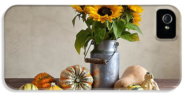 Pumpkins And Sunflowers IPhone 5s Case by Nailia Schwarz