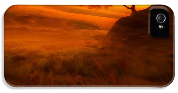 Sunset Duet IPhone 5s Case by Lourry Legarde