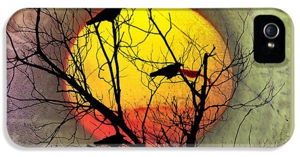 Three Blackbirds IPhone 5s Case