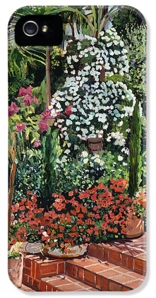 A Garden Approach IPhone 5s Case by David Lloyd Glover