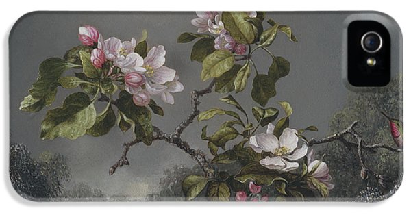 Humming Bird iPhone 5s Case -  Apple Blossoms And Hummingbird by Martin Johnson Heade