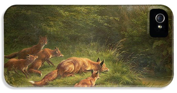 Foxes Waiting For The Prey   IPhone 5s Case by Carl Friedrich Deiker