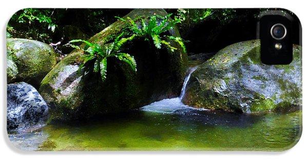 Far North Queensland iPhone 5s Case - A Secret Space - Mossman Gorge, Far North Queensland, Australia by Lexa Harpell