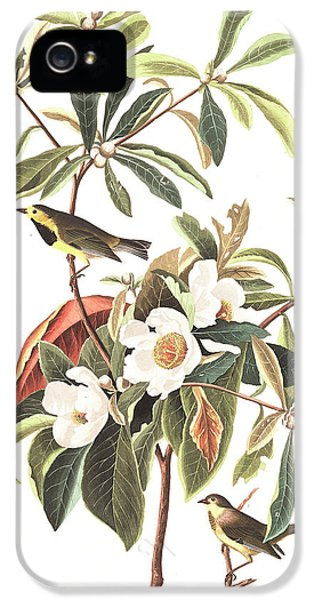 Bachman's Warbler  IPhone 5s Case