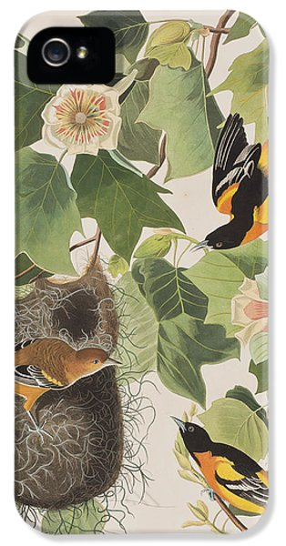 Oriole iPhone 5s Case - Baltimore Oriole by John James Audubon