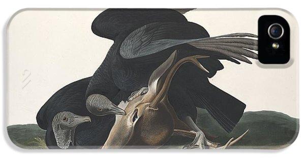 Black Vulture IPhone 5s Case