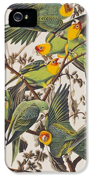 Carolina Parrot IPhone 5s Case by John James Audubon