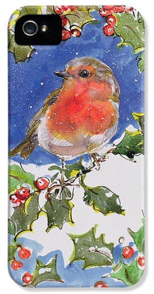 Christmas Robin IPhone 5s Case by Diane Matthes