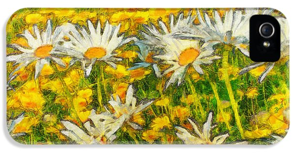 Field Of Daisies IPhone 5s Case