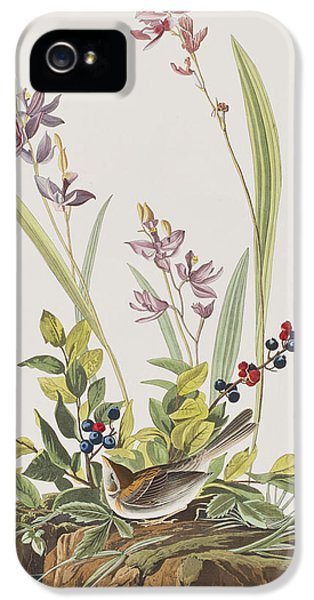 Field Sparrow IPhone 5s Case by John James Audubon