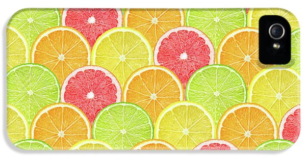 Fresh Fruit  IPhone 5s Case by Mark Ashkenazi