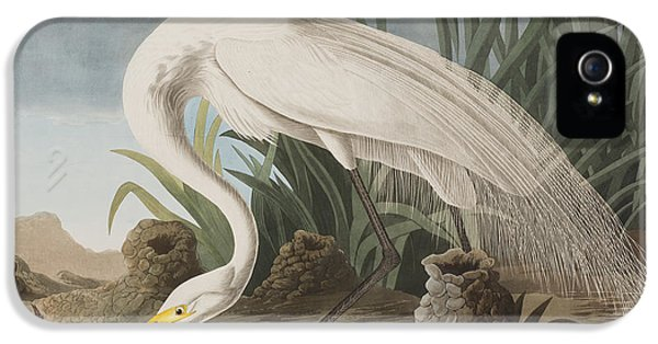 Great Egret IPhone 5s Case by John James Audubon